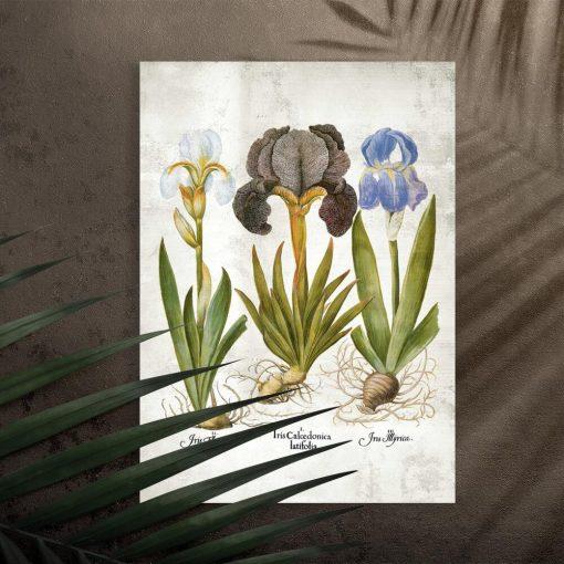 Plakat jako pomoc naukowa z kwiatami
