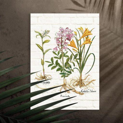 Plakat naukowy z roślinami na tle cegieł