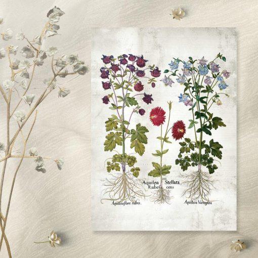 Plakat ogrodowe kwiaty do powieszenia w szkole