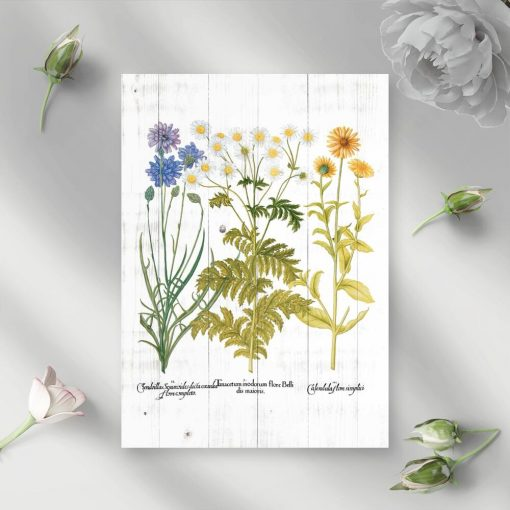 Plakat rustykalny z kwitnącymi roślinami
