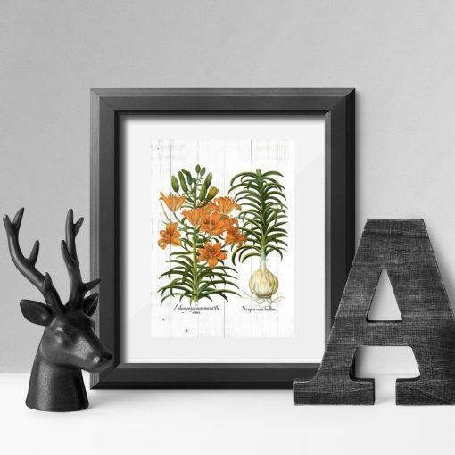 Plakat w pomarańczowym kolorze z liliami