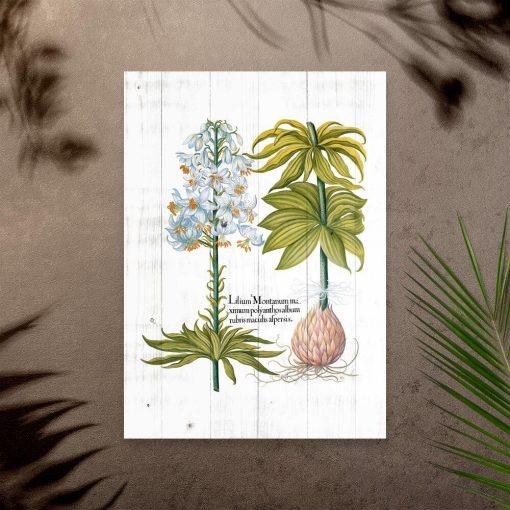 Plakat z białym kwiatem na tle desek i nazwą