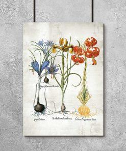 Plakat z kolorowymi kwiatami jako pomoc dydaktyczna
