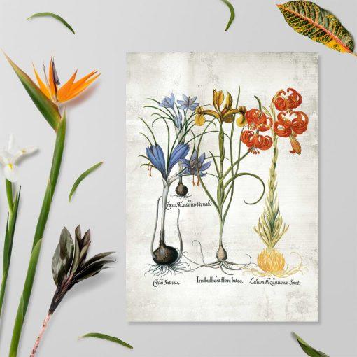 Plakat z kwiatami do dekoracji szkoły