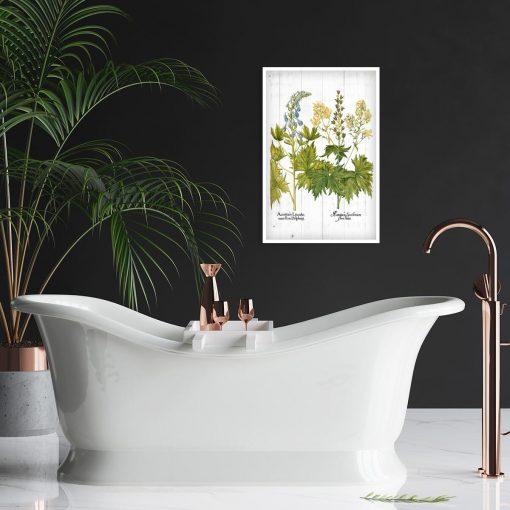Plakat z kwiatami jasnoty białej do łazienki