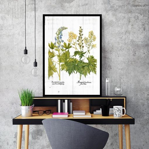 Plakat z kwiatami jasnoty białej do salonu