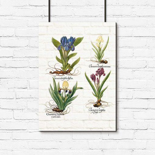 Plakat z kwiatami na tle muru