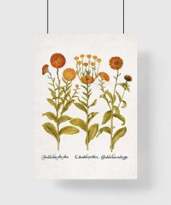 Plakat z kwiatami w pomarańczowym kolorze