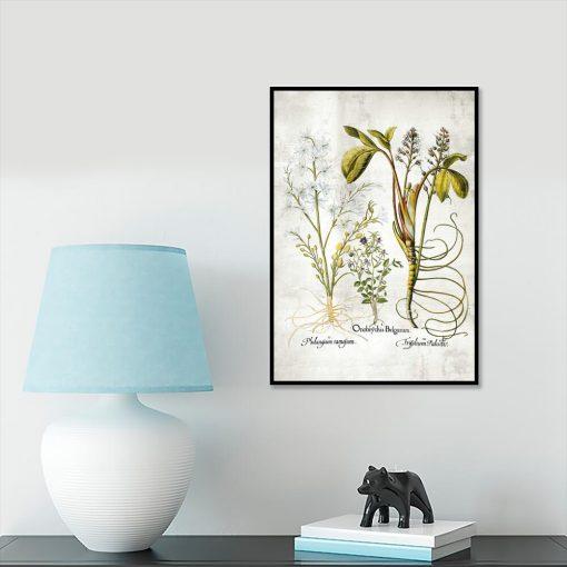Plakat z kwiatem pęczyny błotnej do gabinetu