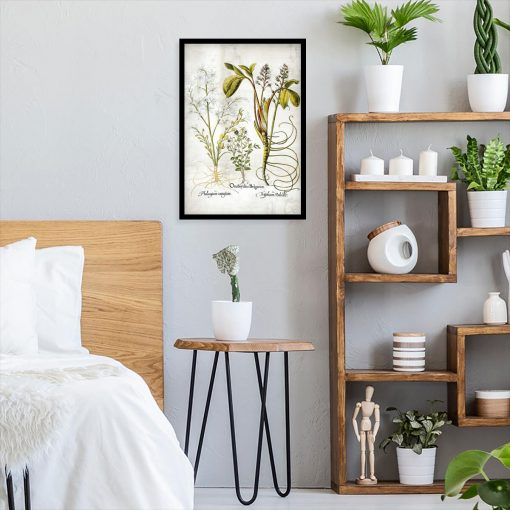 Plakat z kwiatem pęczyny błotnej do sypialni