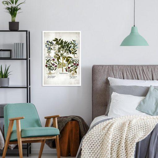 Plakat z kwiatem powojnika do sypialni