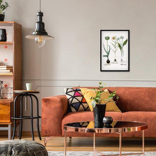 Plakat z kwiatem zielonego tulipana do pokoju