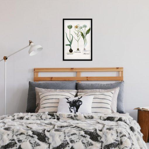 Plakat z kwiatem zielonego tulipana do sypialni