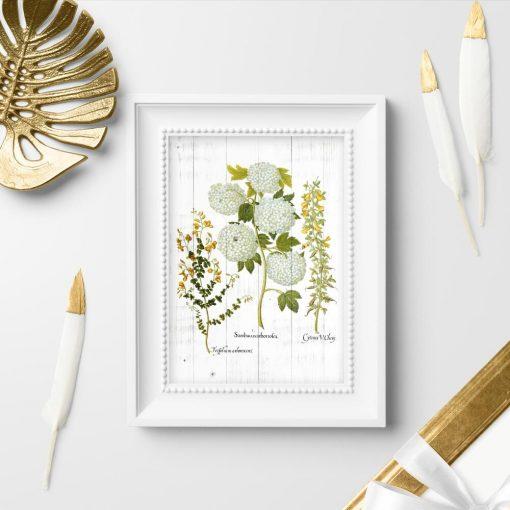 Plakat z kwiatostanem roślin na tle desek