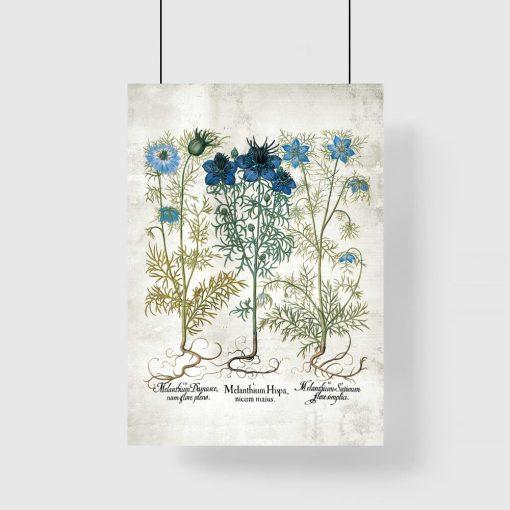 Plakat z motywem niebieskich kwiatów łąkowych