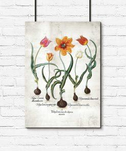 Plakat z płomienistymi tulipanami do gabinetu
