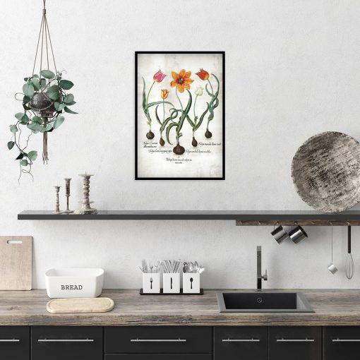 Plakat z płomienistymi tulipanami do kuchni