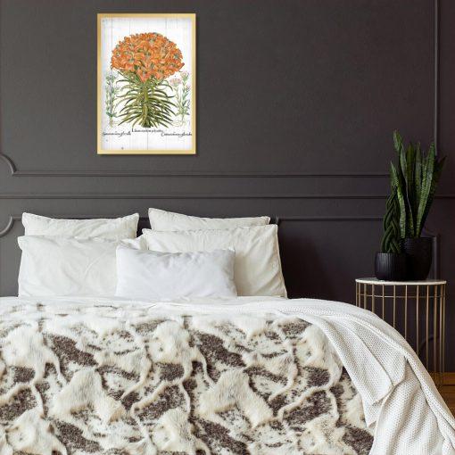 Plakat z pomarańczową lilią tygrysią do sypialni