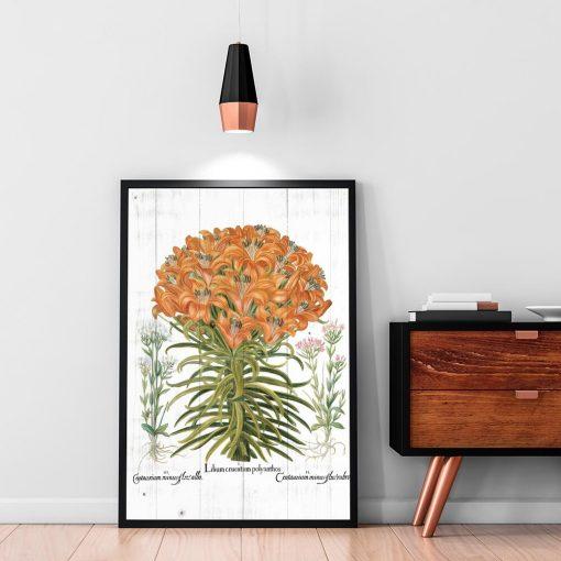 Plakat z pomarańczową lilią tygrysią na przedpokój