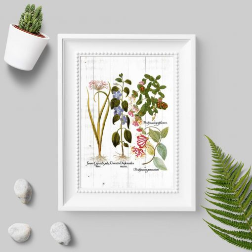 Plakat z roślinami na tle desek do dekoracji sklepu