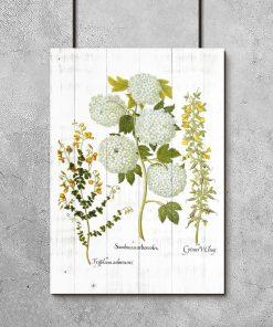Plakat z roślinami na tle desek