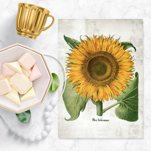 Plakat żółty słonecznik
