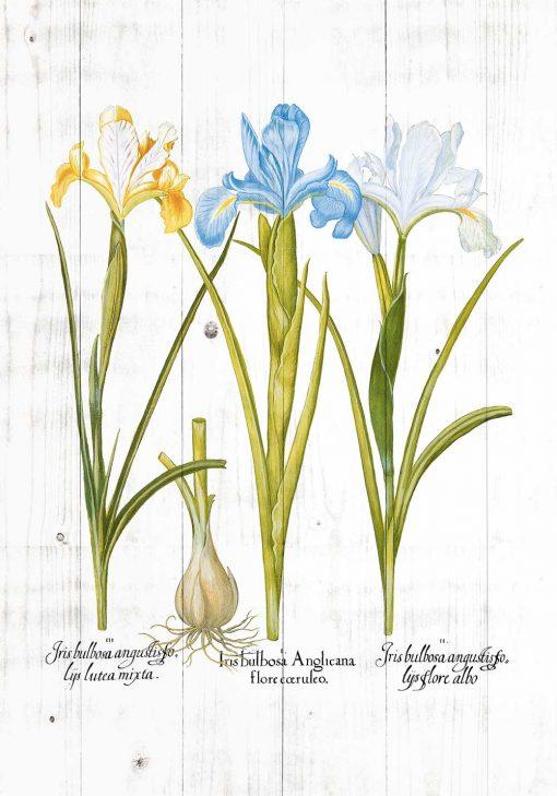 Poster z motywem kwiatowym