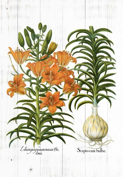 Rustykalny plakat z kwiatami