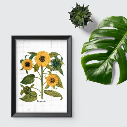 Rustykalny plakat ze słonecznikiem