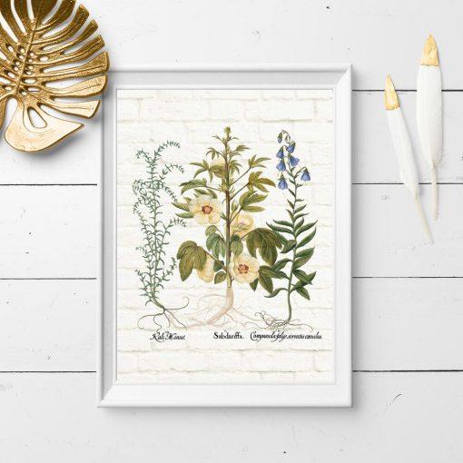 Plakat do szkoły z motywem botanicznym