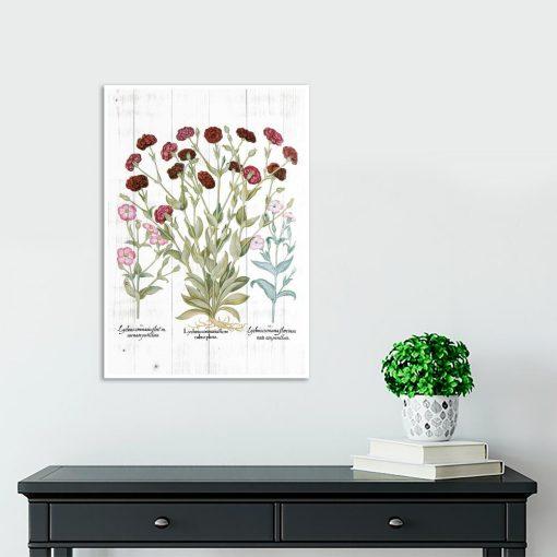 Plakat edukacyjny z kwiatami ogrodowymi do gabinetu