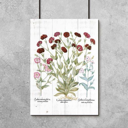 Plakat edukacyjny z kwiatami ogrodowymi do przedpokoju