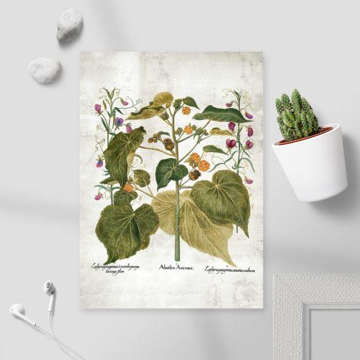 Plakat edukacyjny - zaślaz i inne rośliny