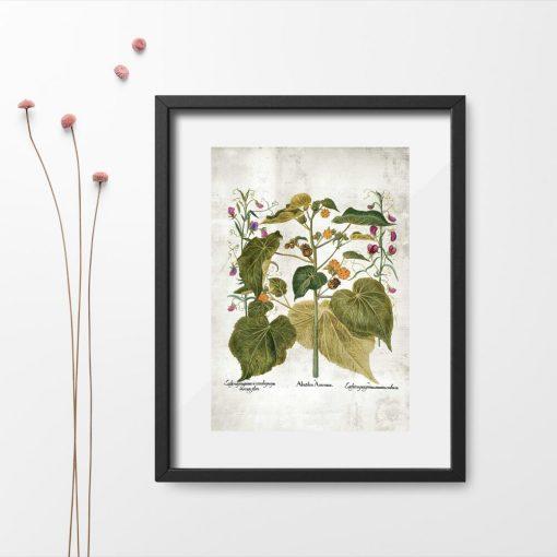 Plakat edukacyjny zielone rośliny i kolorowe kwiatuszki