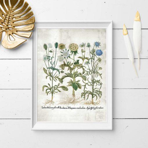 Plakat kwiaty kwitnące