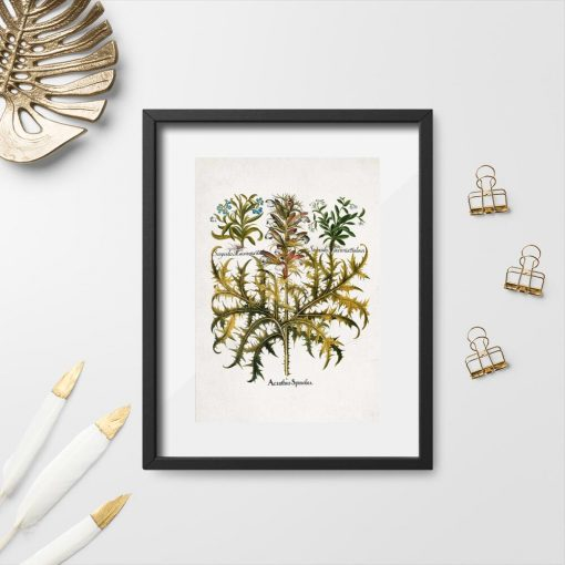 Plakat rustykalny z liśćmi akantu