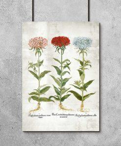 Plakat rustykalny z motywem floksów