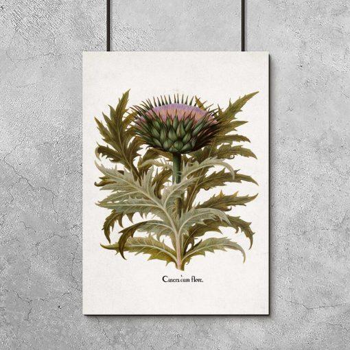 Plakat rustykalny z warzywem