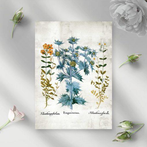 Plakat z kwiatami i listkami