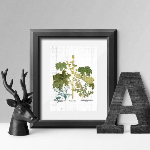 Plakat z kwitnącymi ziołami
