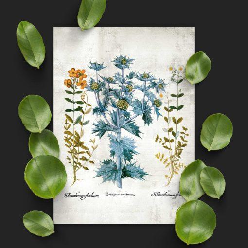 Plakat z motywem kwiatowym do powieszenia w szkole