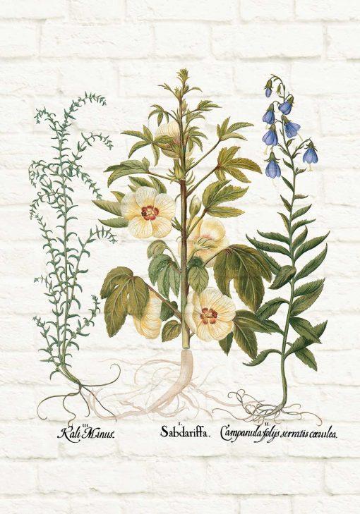 Plakat z motywem roślin na tle cegieł do powieszenia w sklepie