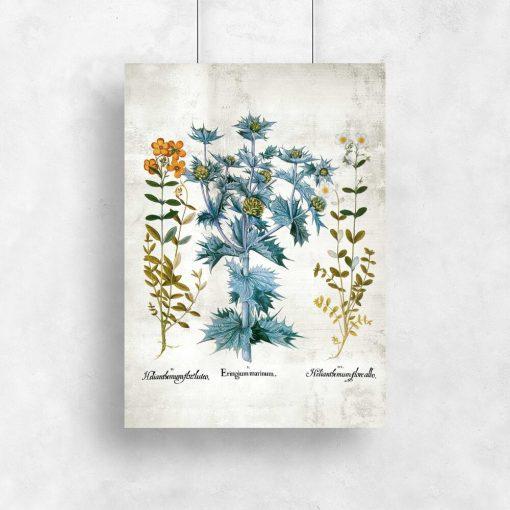 Plakat z roślinami do dekoracji sklepu pgrodniczego