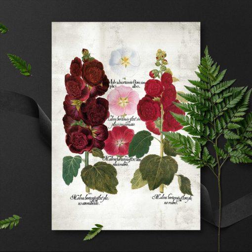 Plakaty z kwiatami ogrodowymi do powieszenia w poczekalni