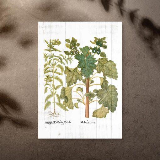 Rustykalny plakat z ziołami